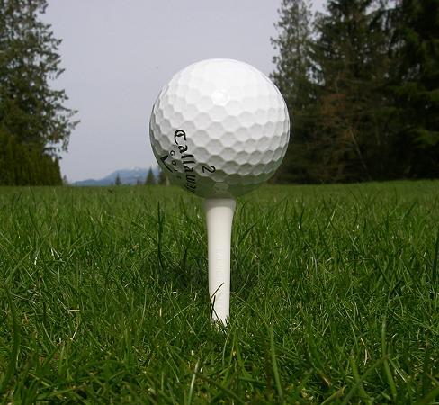 Der er mange størrelser, og forskellige slags golftees at vælge imellem. Hvilken slags er du til?